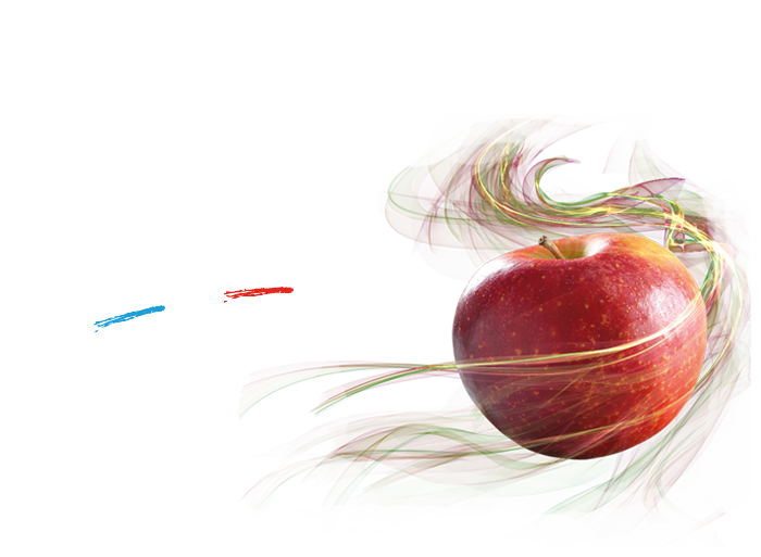 La pomme Française toute l'année